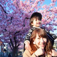 桜と肩車される男の子